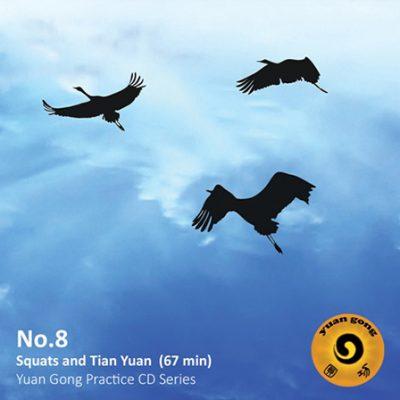yuan-gong-cd-08