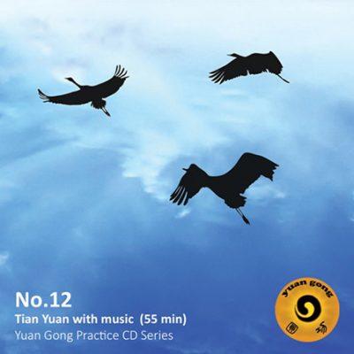 yuan-gong-cd-12